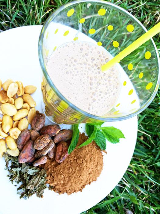 Zelfgemaakte vegan milkshake met pinda, cacao en munt