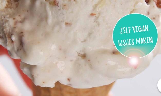 Zelf vegan ijs maken met Plantaardig IJsplezier!