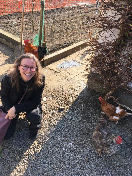 Elke en de kippen