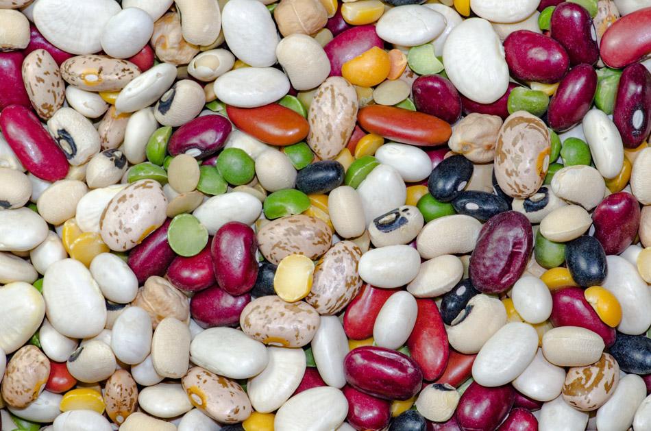 soorten peulvruchten, bonen