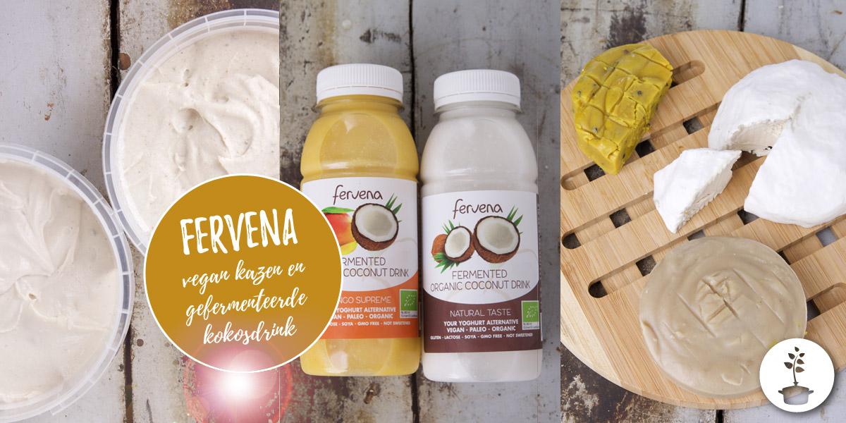 Fervena kazen en kokosdrinks review (vegan, bio, paleo)