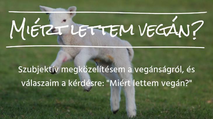 miert lettem vegan