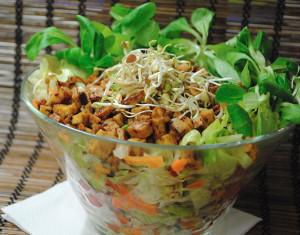 vegan salata a kozmoszban