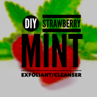 DIY: Strawberry Mint Facial Exfoliant/Mask
