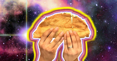 Largest Vegan taco in the universe
