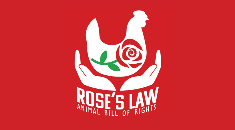 DxE direct action everywhere shuts down pig farm in canada under roses law