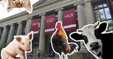Harvard Law School is teaching a course on fighting for animal rights