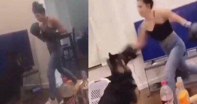 London Miner a woman from Boise Idaho can be seen in a video posted to social media punching her dog with boxing gloves until the dog screeches in pain.