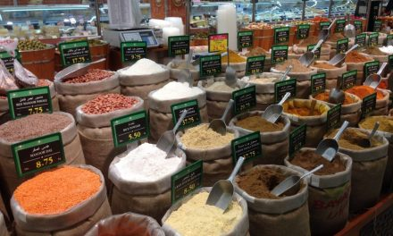 Vegan Dubai Guide