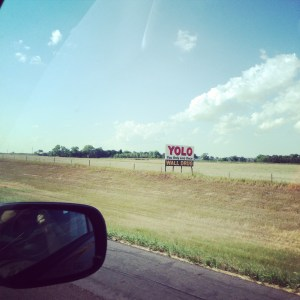 Yolo Wall Drug Sign | Vegan Nom Noms