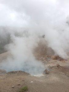 Geysers in Yellowstone   Vegan Nom Noms