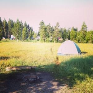 Camping in Yellowstone   Vegan Nom Noms