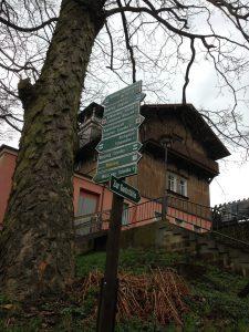 Trail Options near Großer Winterberg Hotel - Vegan Nom Noms