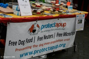 Protect a Pup offer free microchipping