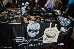 Sea Shepherd - always eye-catching