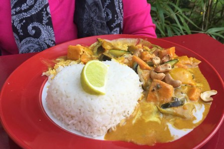 Vegan Eagle: Tai Curry