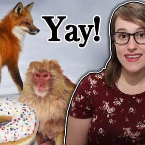 The Best Vegan News of 2020! (aka my favorite news)