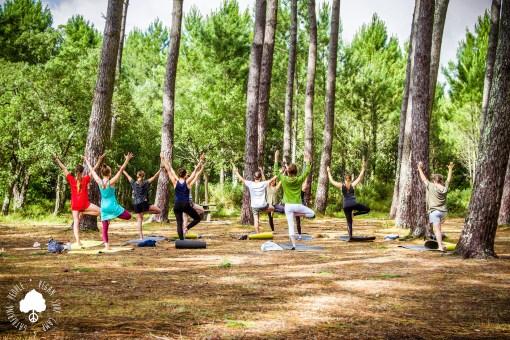 Morning Yoga Vegan Surf Camp