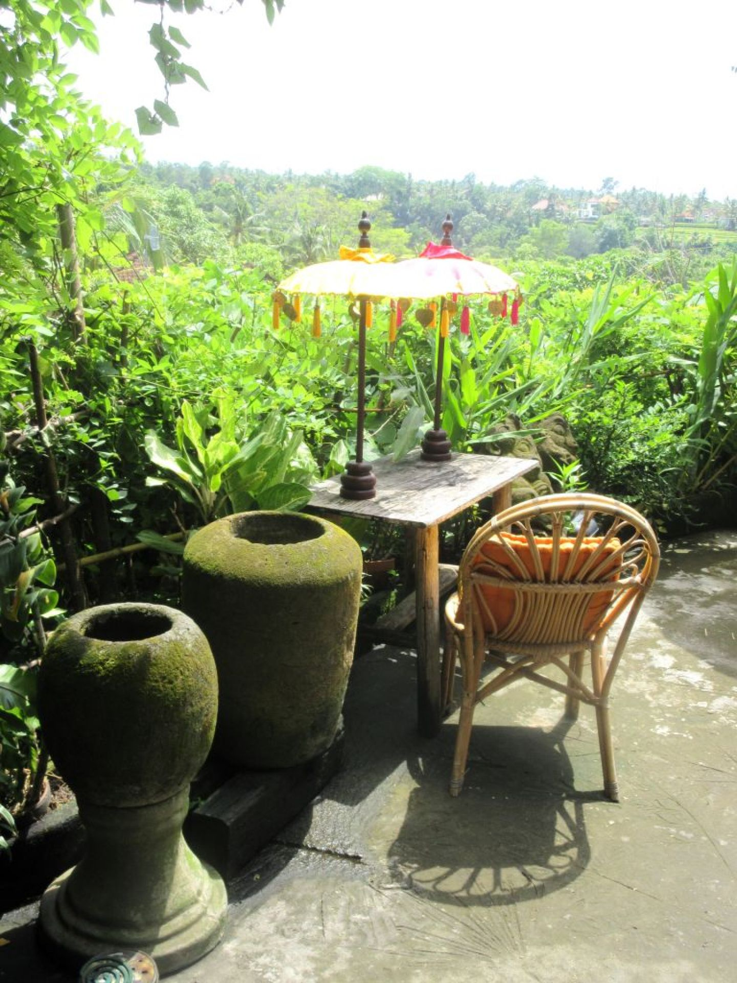 Rent A House In Ubud Bali Everything You Must Know Vegans With Appetites