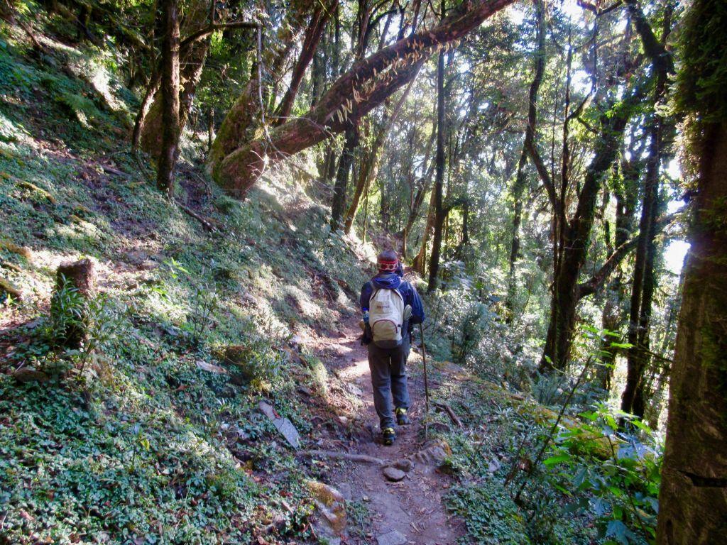 trekking the mardi himal