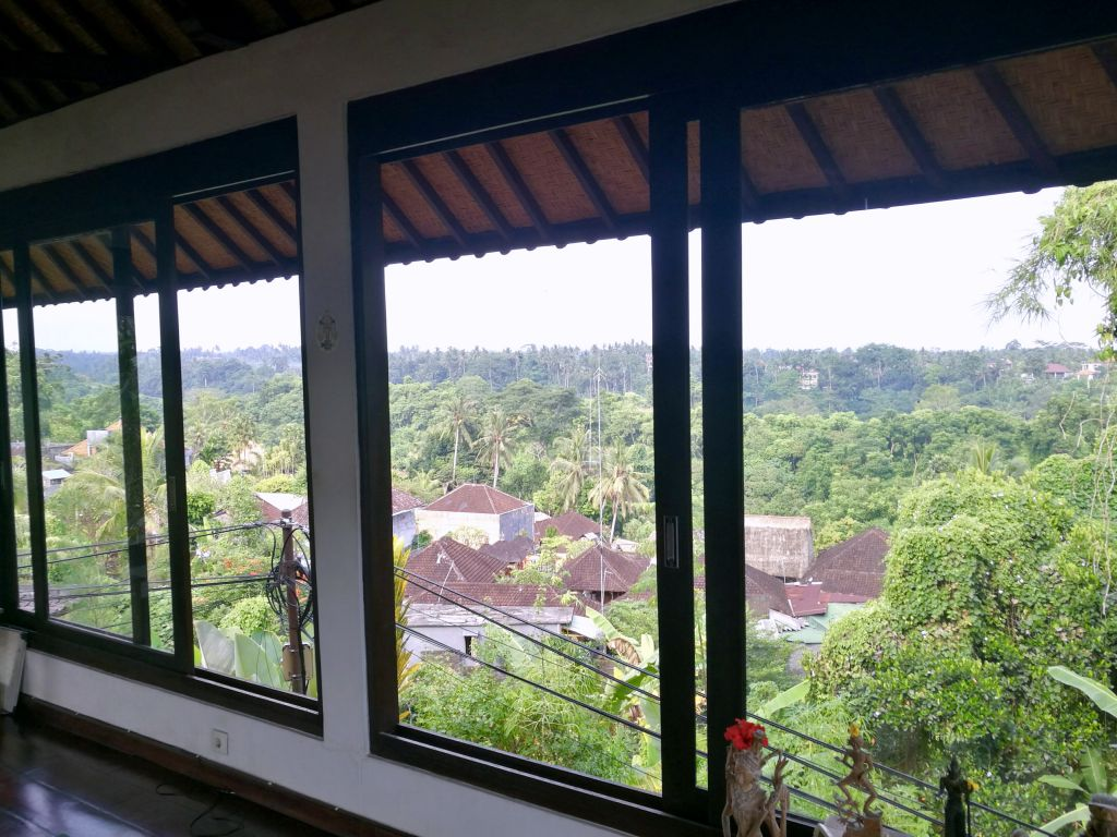 View of jungle from yoga studio in Ubud