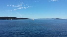 Sidney ferry views 2