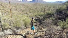Cougar Trail