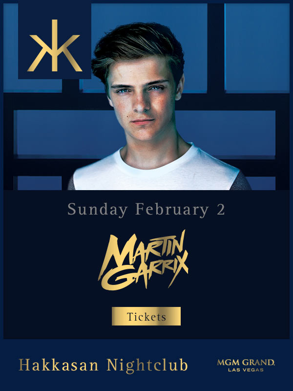 Martin Garrix at Hakkasan Nightclub
