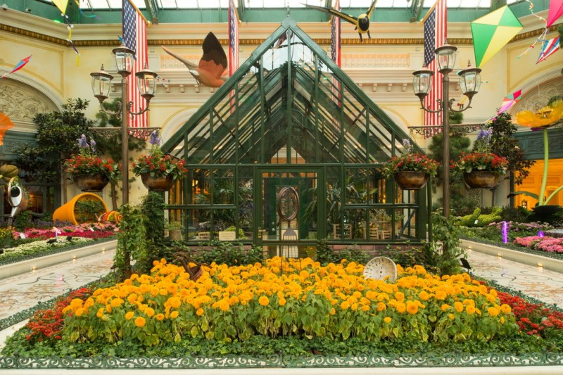 Bellagio Conservatory - Summer Display - Greenhouse - 2014