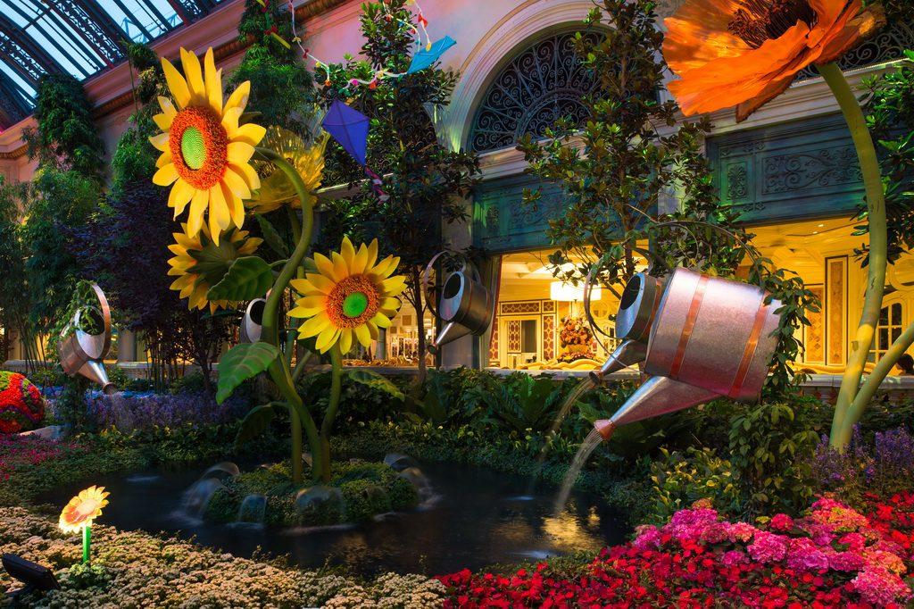 Bellagio Conservatory - Summer Display - Sunflowers - 2014