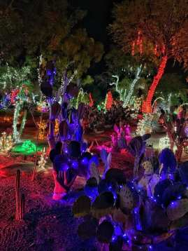 Ethel M Holiday Lighting