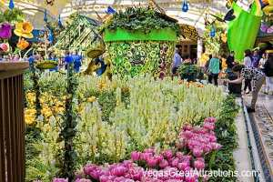 Bellagio Gardens spring 2014