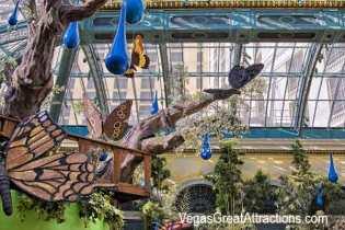 Botanical Garden Spring 2014