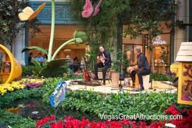 Bellagio Botanical Garden Spring 2014