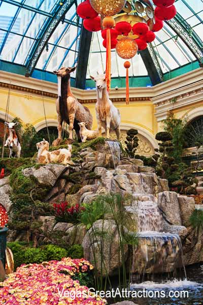 Goats display at the Chinese New Year 2015, Bellagio