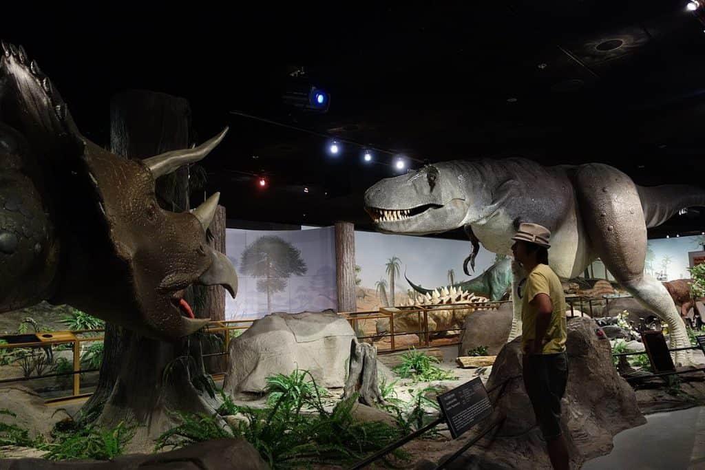 Las Vegas Natural History Museum - Museums in Las Vegas