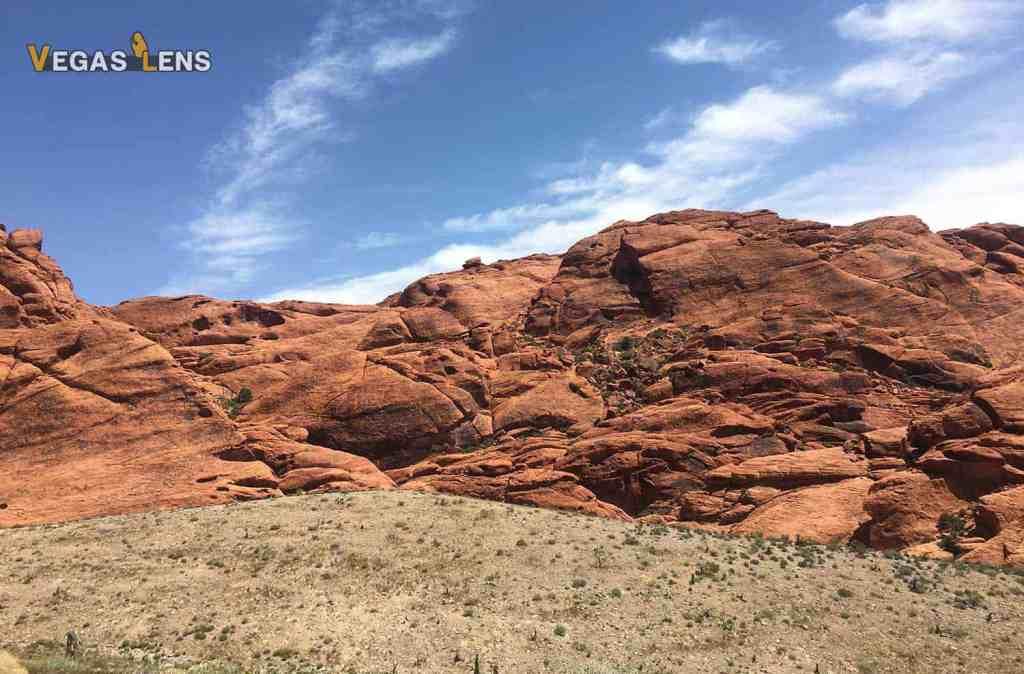 A Red Rock Canyon Tour