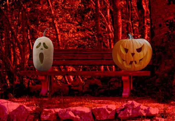 Two scary jack-o-lanterns on a bench in the woods