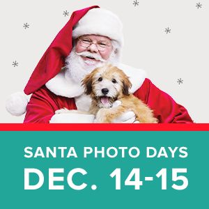 PetSmart-FREE Santa Pics for Pets and more - Vegas Living ...