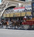 Clydesdales In front of Beer Park