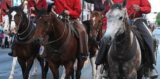 2019 Las Vegas Days Rodeo & Helldorado Parade Downtown; Core Arena At The Plaza Hotel & Casino To Host Free Rodeo May 10-11