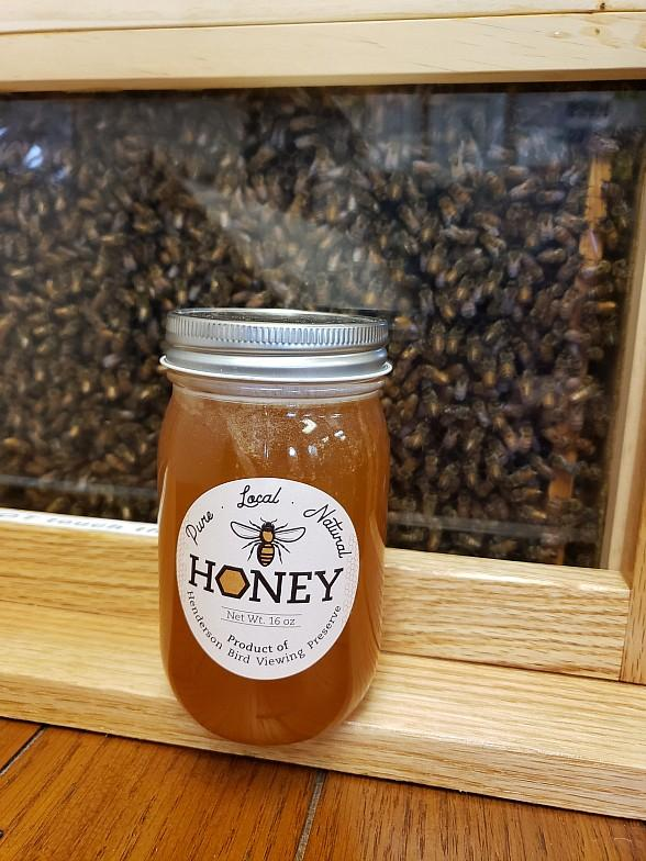 Explore the Birds and the Bees in Henderson