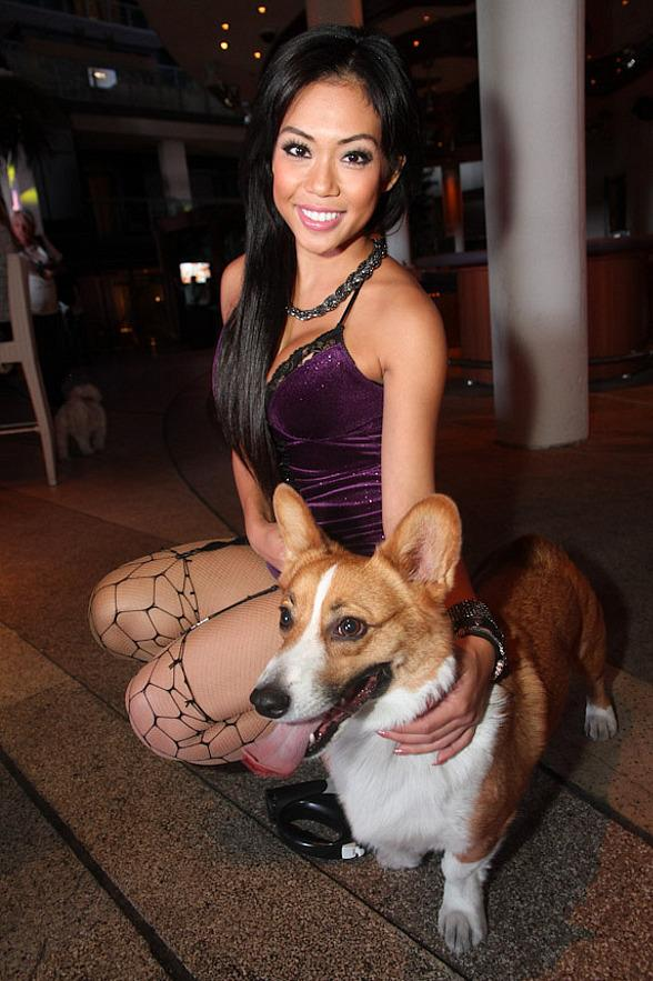 Marquee Transforms into a Puppy Playground for Charity Oct. 10