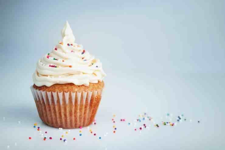 Planteneers_Vanilla Cupcake