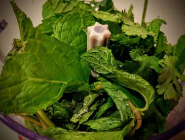Mint Raita Recipe Step By Step Instructions 1
