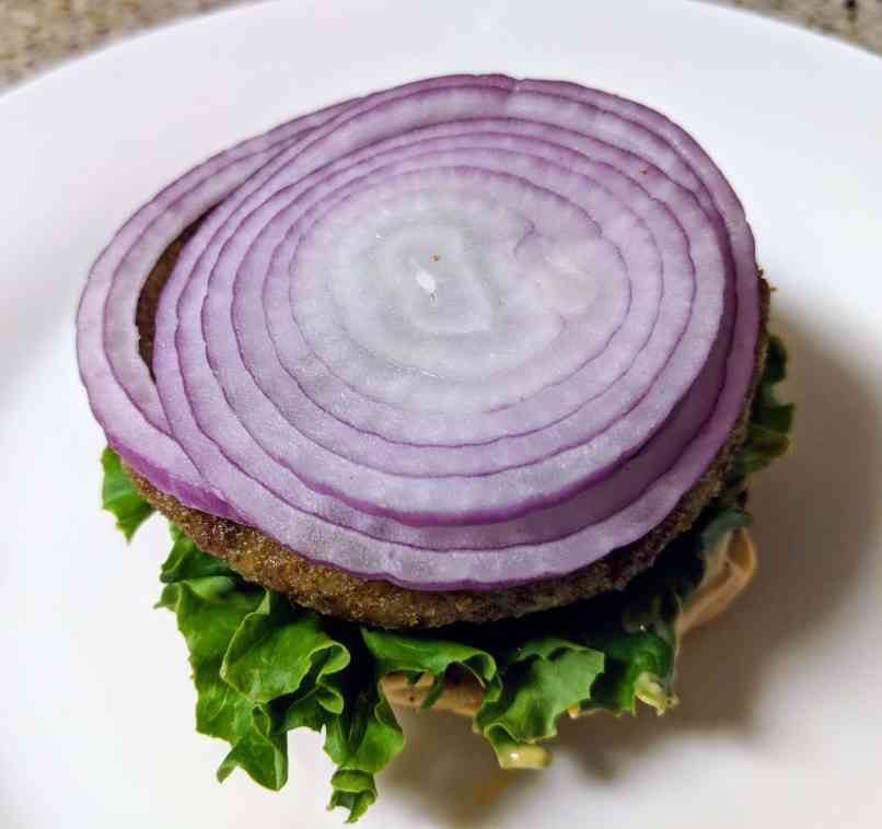 Veggie Burger Recipe Step By Step Instructions 22