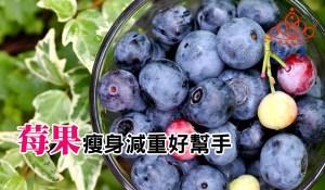 莓果瘦身減重好幫手