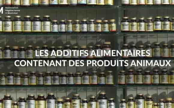Les additifs alimentaires d'origine animale dans nos produits du quotidien