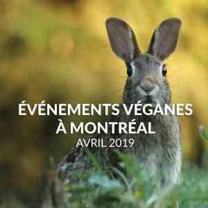 Événements véganes d'Avril 2019 à Montréal
