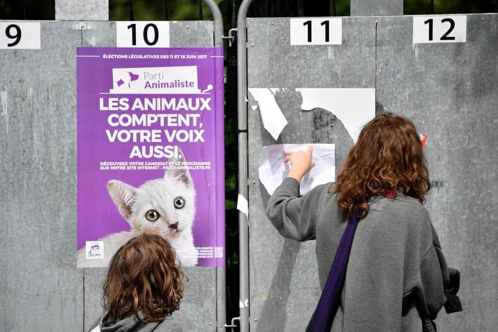Percée du Parti animaliste et de la cause animale aux élections européennes en France
